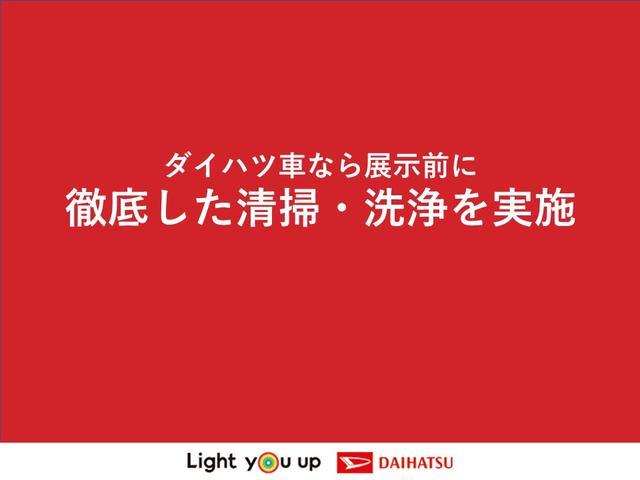 タフトG.(車内 消臭・抗菌 処理済) 衝突被害軽減システム 純正アルミホイール キーフリーシステム(新潟県)の中古車